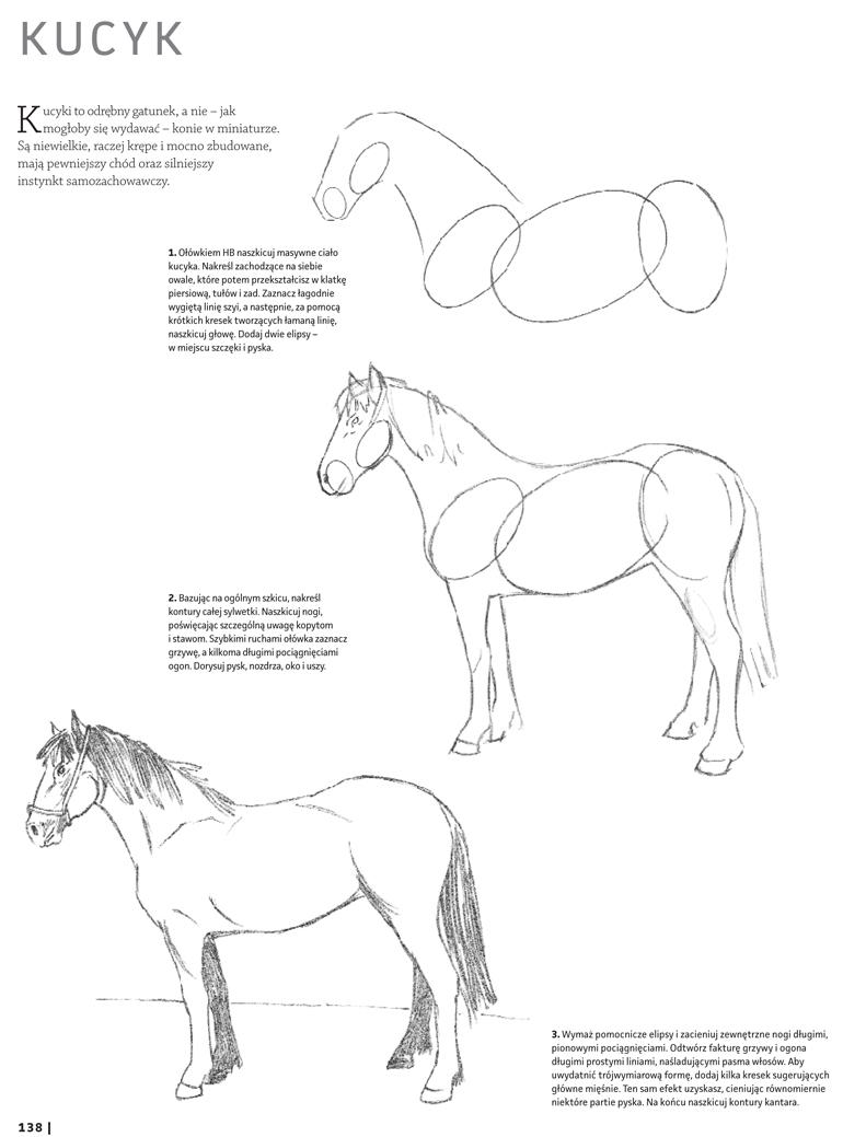 Rysowanie konia ołówkiem. Krok po kroku.