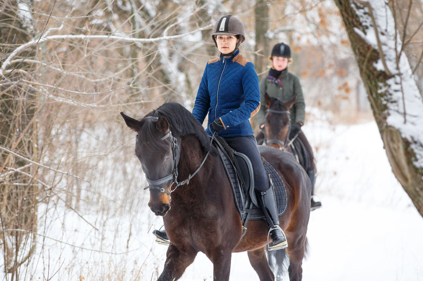 b42fa52ed0bc3 7 niezbędnych rzeczy dla jeźdźca, czyli w czym na konia!